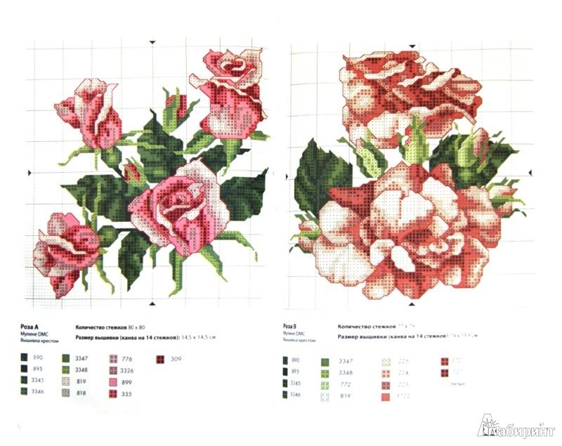 Иллюстрация 1 из 31 для Цветы - Джейн Мэйхью | Лабиринт - книги. Источник: Лабиринт