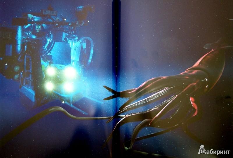 Иллюстрация 1 из 31 для Глубина. Таинственный мир океанских пучин - Клер Нувиан | Лабиринт - книги. Источник: Лабиринт