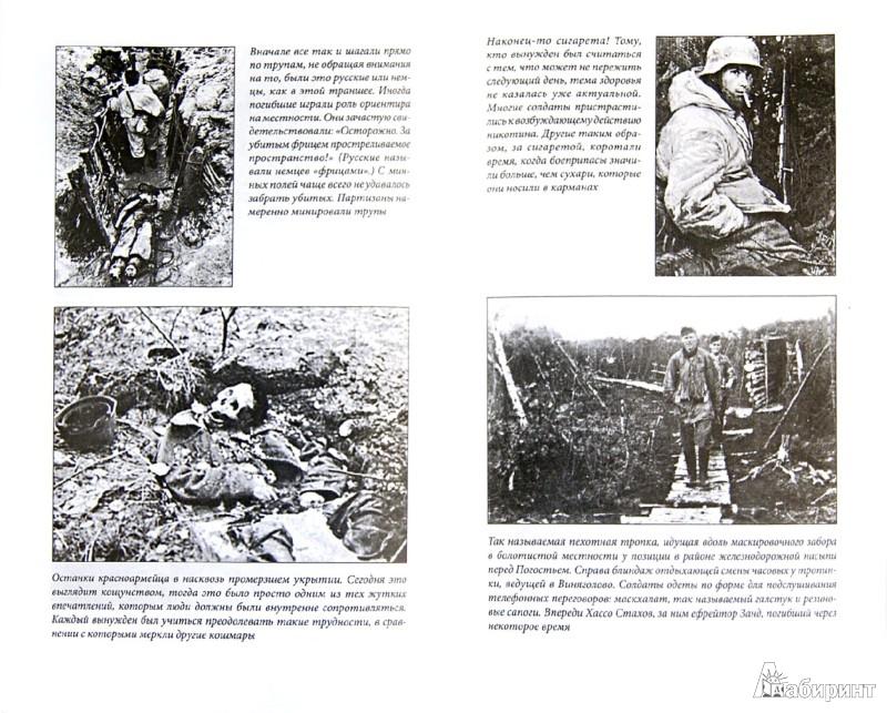 Истории и цитаты героев великой отечественной войны