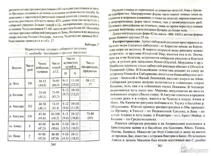 Иллюстрация 1 из 7 для Лососеводство - Сергей Пономарев   Лабиринт - книги. Источник: Лабиринт