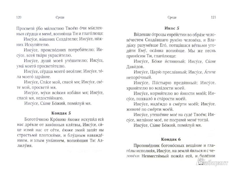 Иллюстрация 1 из 4 для Каноны и акафисты на каждый день седмицы | Лабиринт - книги. Источник: Лабиринт