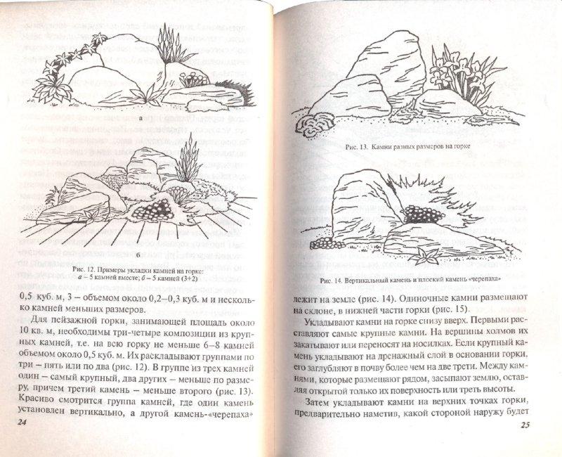 Иллюстрация 1 из 11 для Каменистые горки - Наталья Лунина   Лабиринт - книги. Источник: Лабиринт