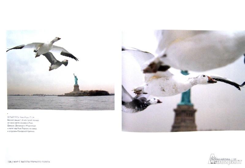 Иллюстрация 1 из 44 для Мир с высоты птичьего полета - Джон Доунер | Лабиринт - книги. Источник: Лабиринт