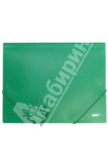 Папка A4 с резинкой, непрозрачная, зеленая (DC202-03)