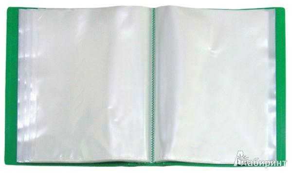 Иллюстрация 1 из 2 для Папка со 100 вкладышами в пластиковом коробе, А4, зеленая (DB100AB-03)   Лабиринт - канцтовы. Источник: Лабиринт