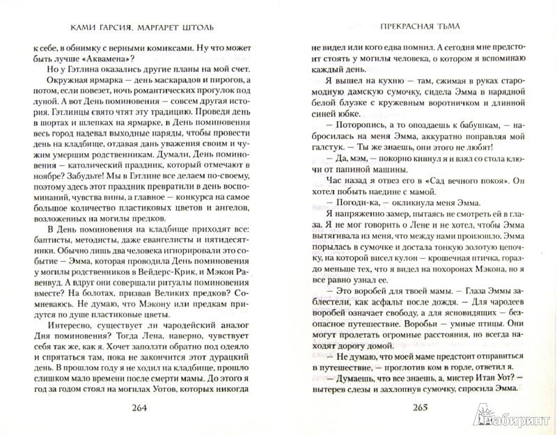 Иллюстрация 1 из 7 для Прекрасная тьма - Гарсия, Штоль   Лабиринт - книги. Источник: Лабиринт