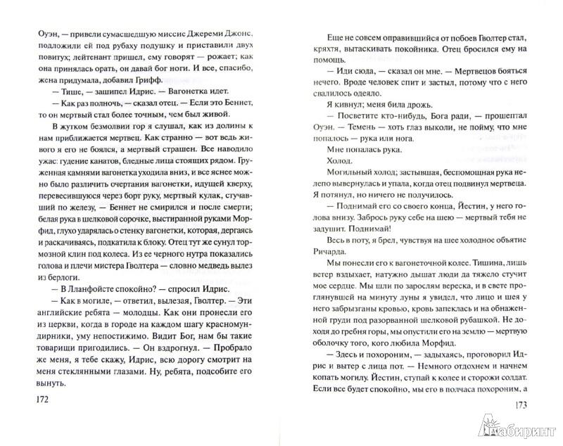 Иллюстрация 1 из 17 для Поругание прекрасной страны - Александр Корделл | Лабиринт - книги. Источник: Лабиринт