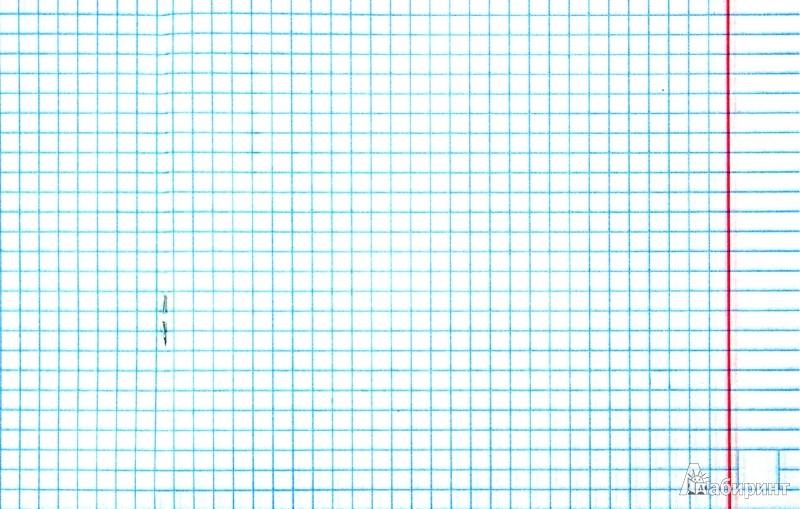 """Тетрадь в клетку """"Времена года"""", 48 листов, А5 (48Т5С1) - Издательство Альфа-книга"""