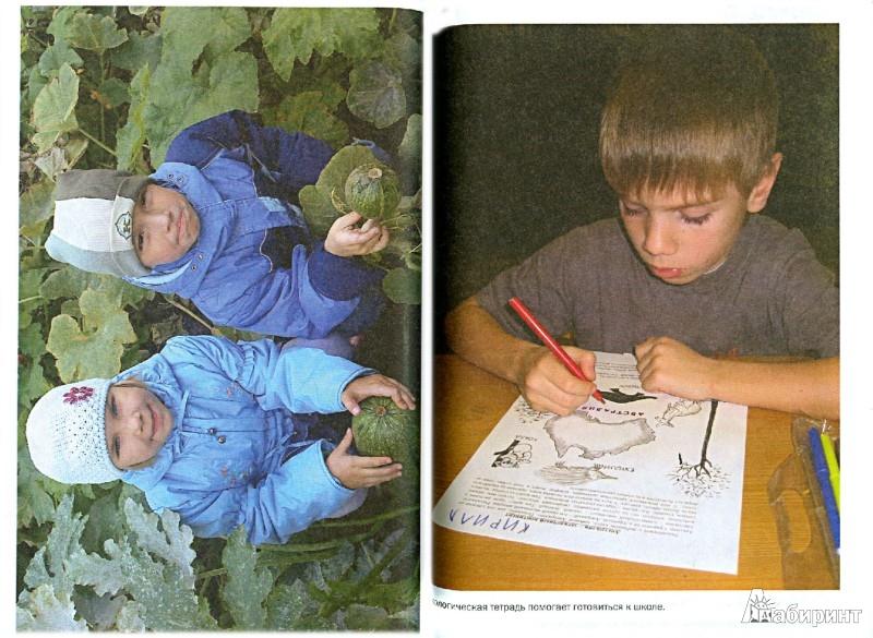 Иллюстрация 1 из 16 для Приобщение дошкольников к природе в детском саду и дома - Светлана Николаева | Лабиринт - книги. Источник: Лабиринт