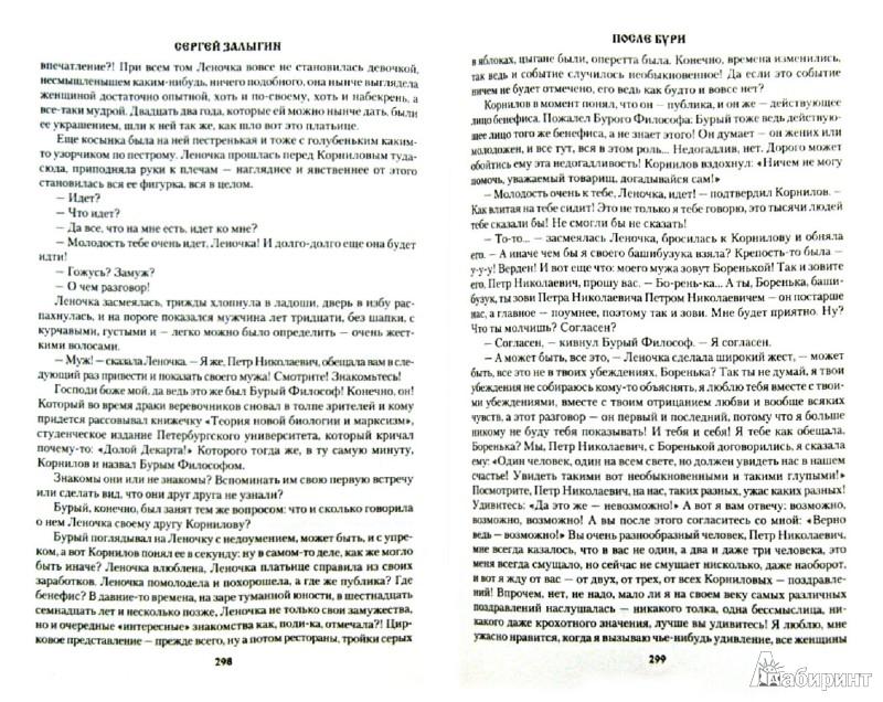 Иллюстрация 1 из 7 для После бури - Сергей Залыгин | Лабиринт - книги. Источник: Лабиринт