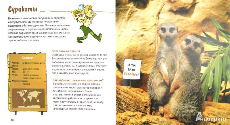 Иллюстрация 1 из 14 для Где живет бегемот? Животные в вопросах и ответах   Лабиринт - книги. Источник: Лабиринт