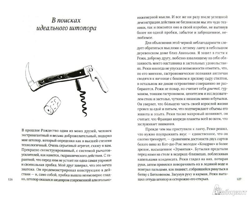 Иллюстрация 1 из 8 для Еще один год в Провансе - Питер Мейл | Лабиринт - книги. Источник: Лабиринт