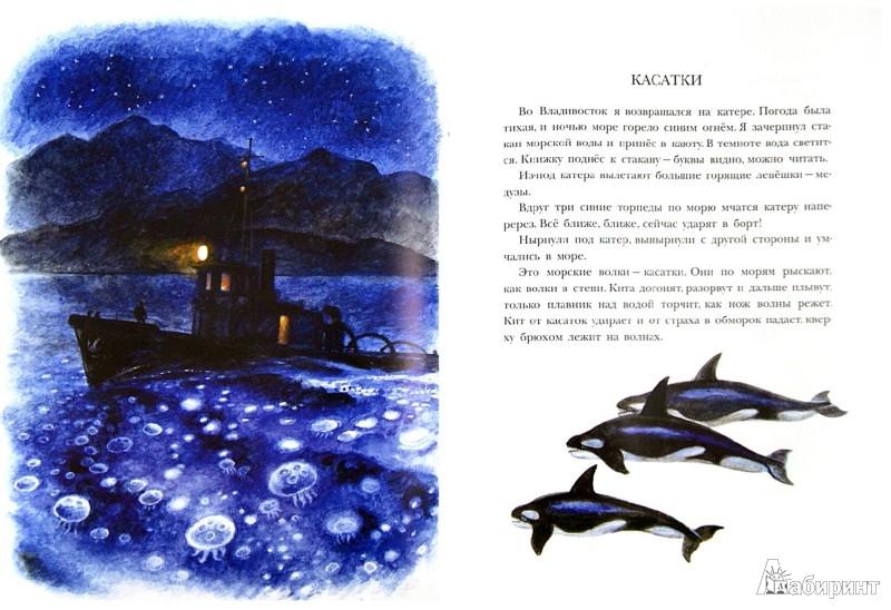 Иллюстрация 1 из 59 для Рассказы о природе, о птицах зверях и разных краях - Геннадий Снегирев | Лабиринт - книги. Источник: Лабиринт