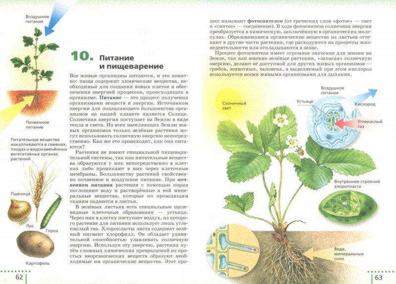 Книги биология живой организм 6 класс