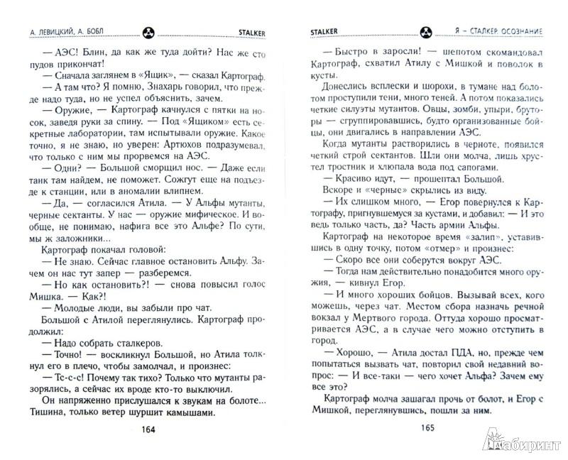 Иллюстрация 1 из 24 для Я - сталкер. Осознание - Левицкий, Бобл | Лабиринт - книги. Источник: Лабиринт