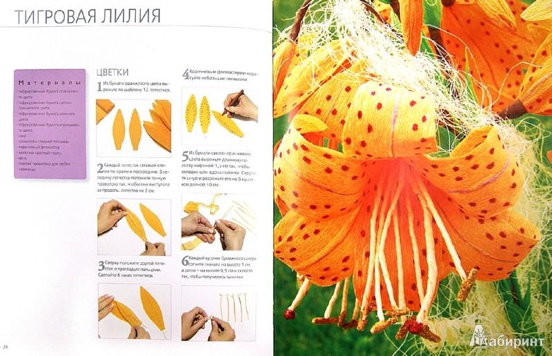 Иллюстрации к цветы и букеты из