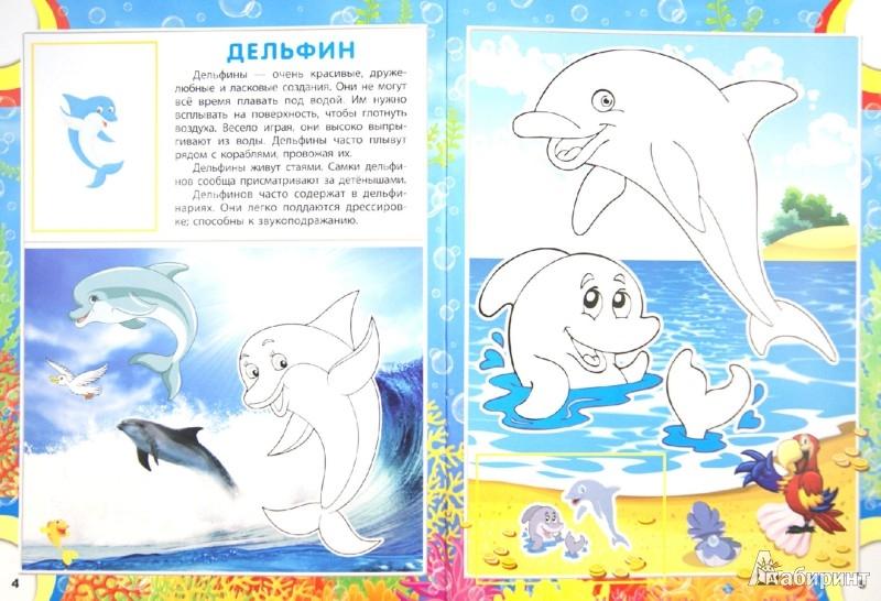 Иллюстрация 1 из 6 для OCEAN. Животный мир морей и океанов   Лабиринт - книги. Источник: Лабиринт