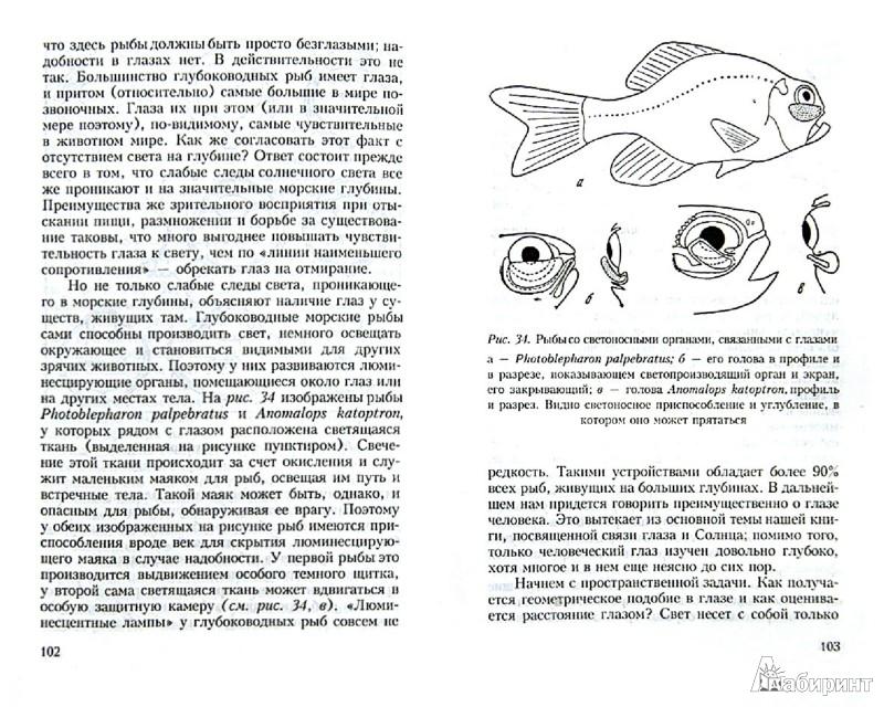 Иллюстрация 1 из 13 для Глаз и солнце: о свете, Солнце и зрении - Сергей Вавилов | Лабиринт - книги. Источник: Лабиринт