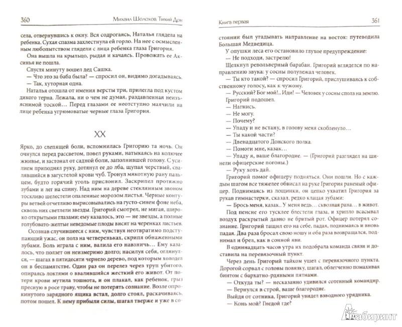 Иллюстрация 1 из 32 для Тихий Дон. Роман в 2 томах. Том 1 (Книги 1 - 2) - Михаил Шолохов | Лабиринт - книги. Источник: Лабиринт