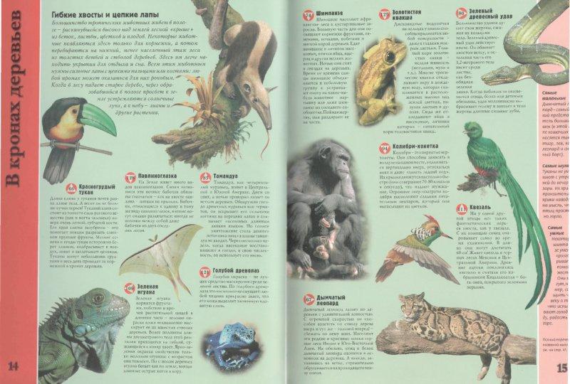 Иллюстрация 1 из 18 для Планета животных - Стив Паркер | Лабиринт - книги. Источник: Лабиринт