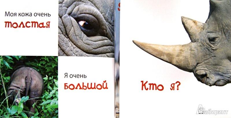 Иллюстрация 1 из 16 для Животные (для детей от 4 лет) | Лабиринт - книги. Источник: Лабиринт