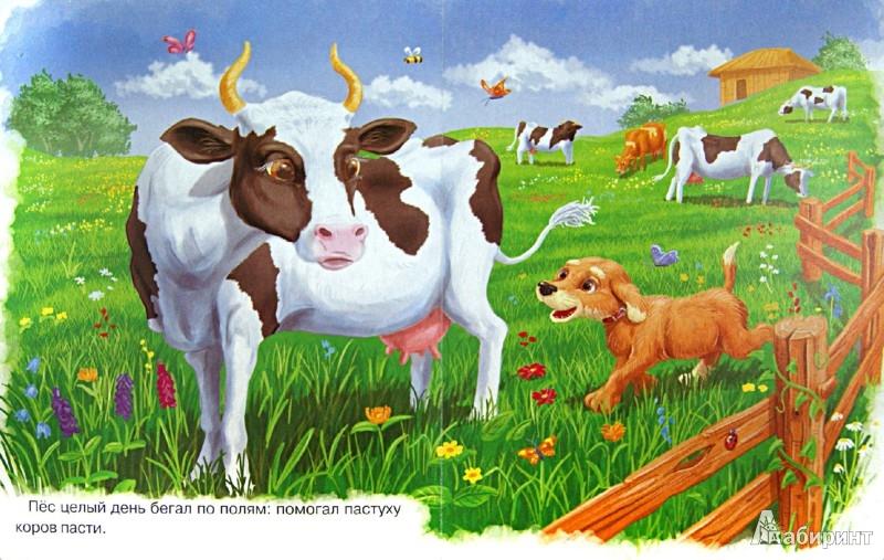 Иллюстрация 1 из 7 для Кот и Пес   Лабиринт - книги. Источник: Лабиринт