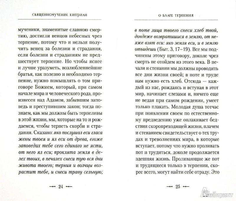 Иллюстрация 1 из 15 для О благе терпения - Киприан Священномученик   Лабиринт - книги. Источник: Лабиринт