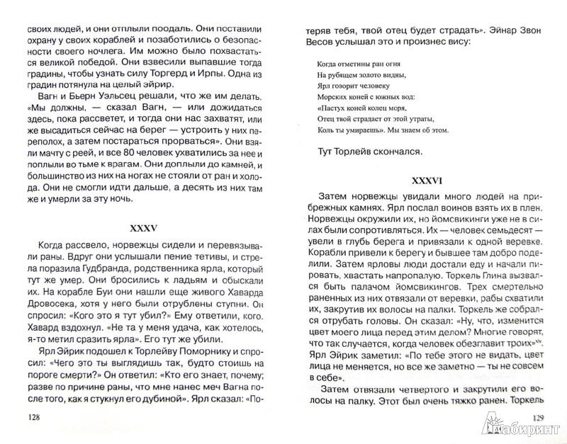 Иллюстрация 1 из 18 для Викинги. Между Скандинавией и Русью - Фетисов, Щавелев | Лабиринт - книги. Источник: Лабиринт