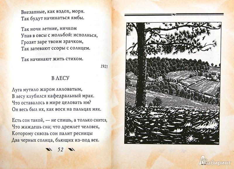 Иллюстрация 1 из 23 для Зеркало - Борис Пастернак   Лабиринт - книги. Источник: Лабиринт
