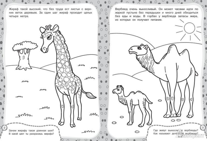 Иллюстрация 1 из 3 для Гуляем по зоопарку | Лабиринт - книги. Источник: Лабиринт