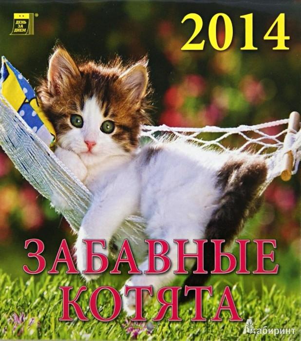 Календарь 2014 забавные котята 30405