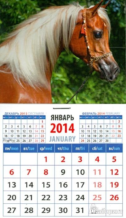 """Первая иллюстрация к книге Календарь на 2014 год.   """"Арабская лошадь """".  Магнитный (20435) ."""