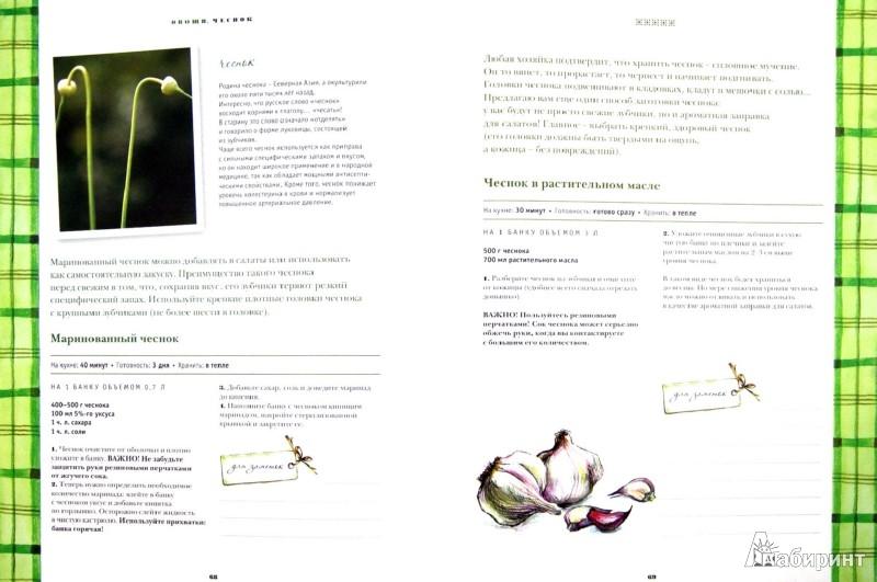 Иллюстрация 1 из 9 для Домашние заготовки для современных хозяек. Самые подробные рецепты - Марина Ярославцева   Лабиринт - книги. Источник: Лабиринт
