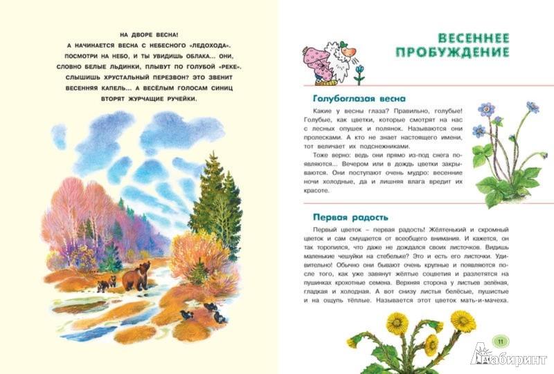 Ответы по Природоведению 5 Класс