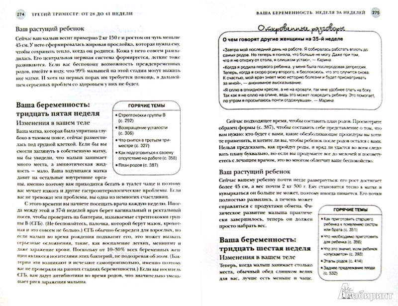 Вирус папилломы человека (ВПЧ - симптомы и лечение)