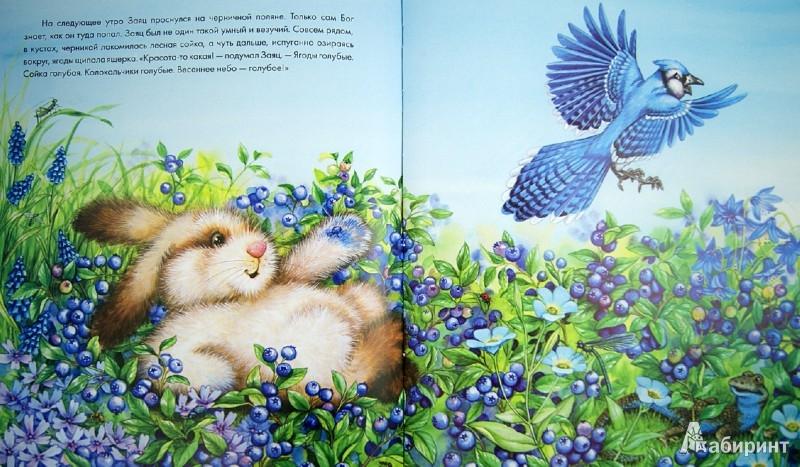Иллюстрация 1 из 29 для Заяц-чудак и его разноцветные шубки - Лиза МакКью | Лабиринт - книги. Источник: Лабиринт