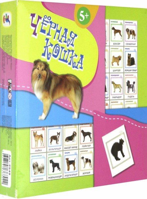 Иллюстрация 1 из 4 для Черная кошка (2549) | Лабиринт - игрушки. Источник: Лабиринт