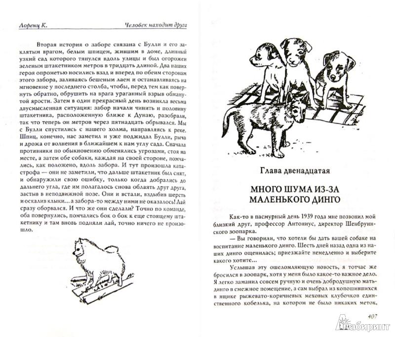 Иллюстрация 1 из 13 для Агрессия. Человек находит друга - Конрад Лоренц   Лабиринт - книги. Источник: Лабиринт
