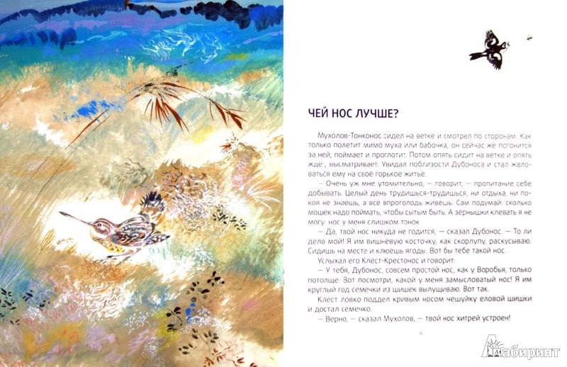 Иллюстрация 1 из 27 для Чей нос лучше? - Виталий Бианки | Лабиринт - книги. Источник: Лабиринт