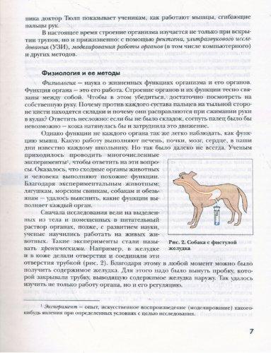 Иллюстрация 1 из 13 для Биология: 8 класс: Учебник для учащихся общеобразовательных организаций - Драгомилов, Маш | Лабиринт - книги. Источник: Лабиринт