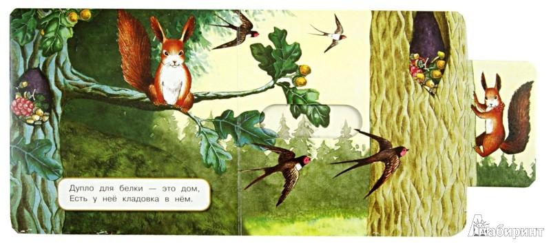 Иллюстрация 1 из 11 для Где мой домик? - Юлия Шигарова   Лабиринт - книги. Источник: Лабиринт