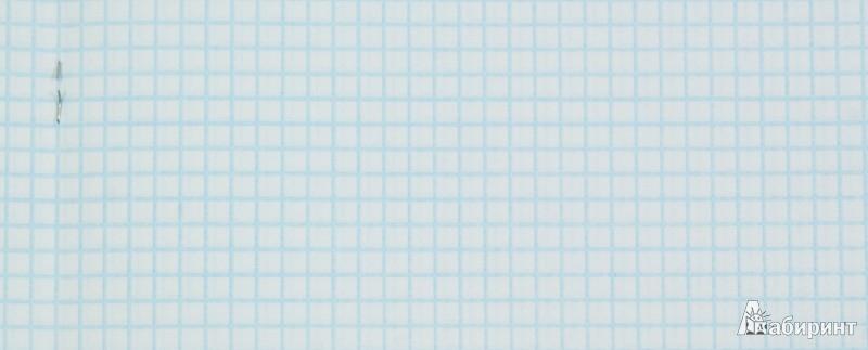 """Иллюстрация 1 из 3 для Тетрадь в клетку,60 листов """"Minnie Mouse(Stylish)"""" (36294-MM/ST)   Лабиринт - канцтовы. Источник: Лабиринт"""