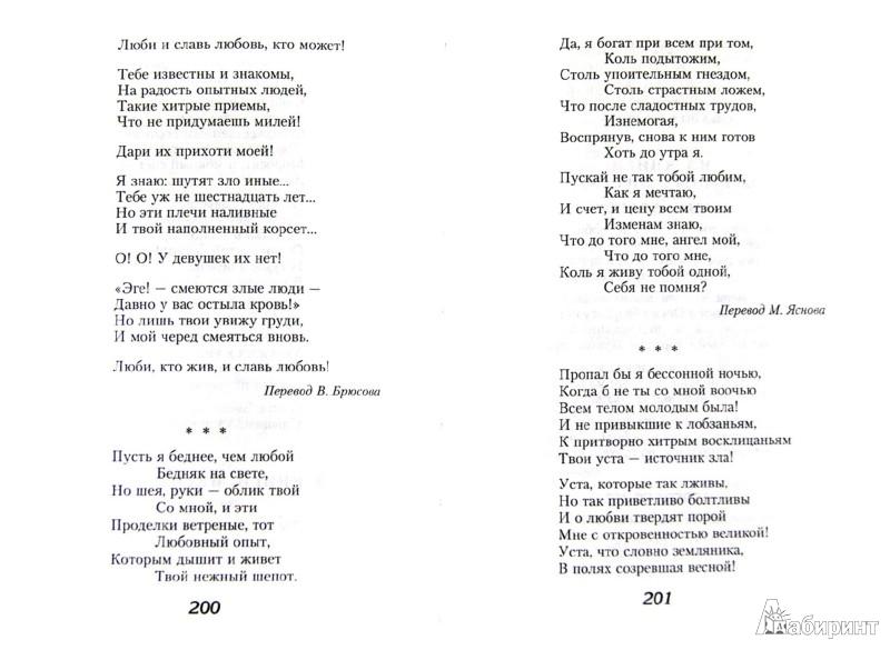 Иллюстрация 1 из 36 для Проклятые поэты. Великие Поэты Мира | Лабиринт - книги. Источник: Лабиринт
