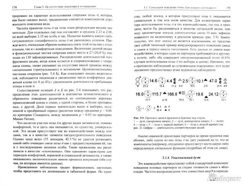 Иллюстрация 1 из 8 для Парадокс непрерывности. Языковой рубикон: о непроходимой пропасти между сигнальными системами животн - Евгений Панов   Лабиринт - книги. Источник: Лабиринт