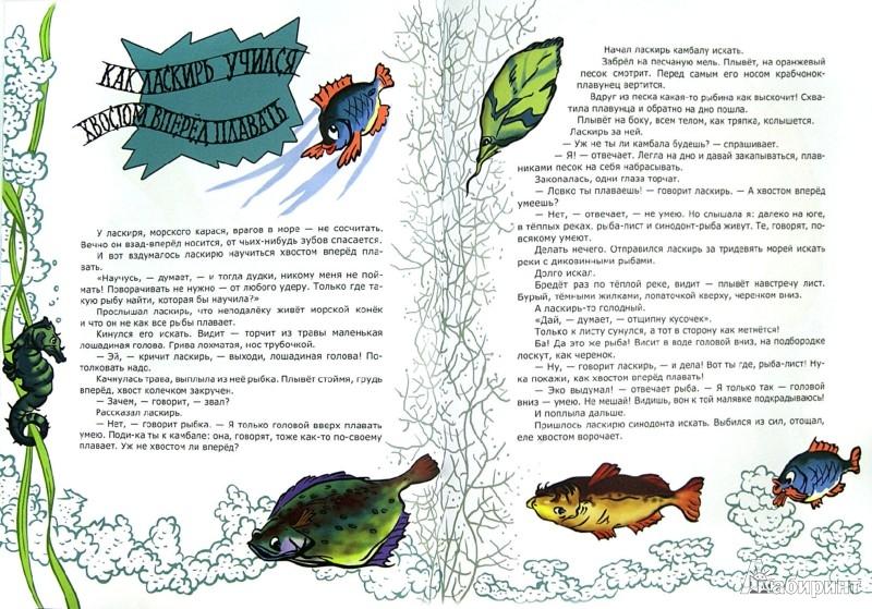 Иллюстрация 1 из 43 для Морские сказки - Святослав Сахарнов | Лабиринт - книги. Источник: Лабиринт