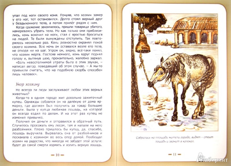 Иллюстрация 1 из 9 для О тех, кто рядом с вами - Белевцева, Жданова | Лабиринт - книги. Источник: Лабиринт