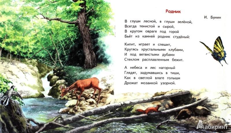 Иллюстрация 1 из 20 для Бабушкино лето | Лабиринт - книги. Источник: Лабиринт