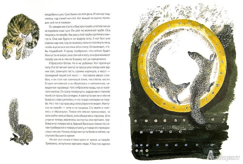 Иллюстрация 1 из 40 для Мангуста - Борис Житков   Лабиринт - книги. Источник: Лабиринт