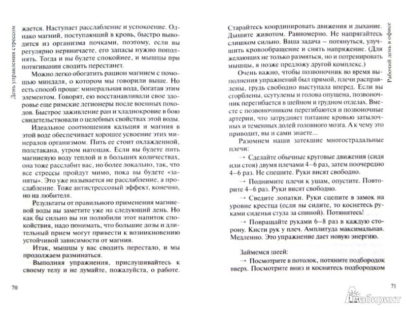 Иллюстрация 1 из 2 для День управления стрессом - Анастасия Борисова | Лабиринт - книги. Источник: Лабиринт