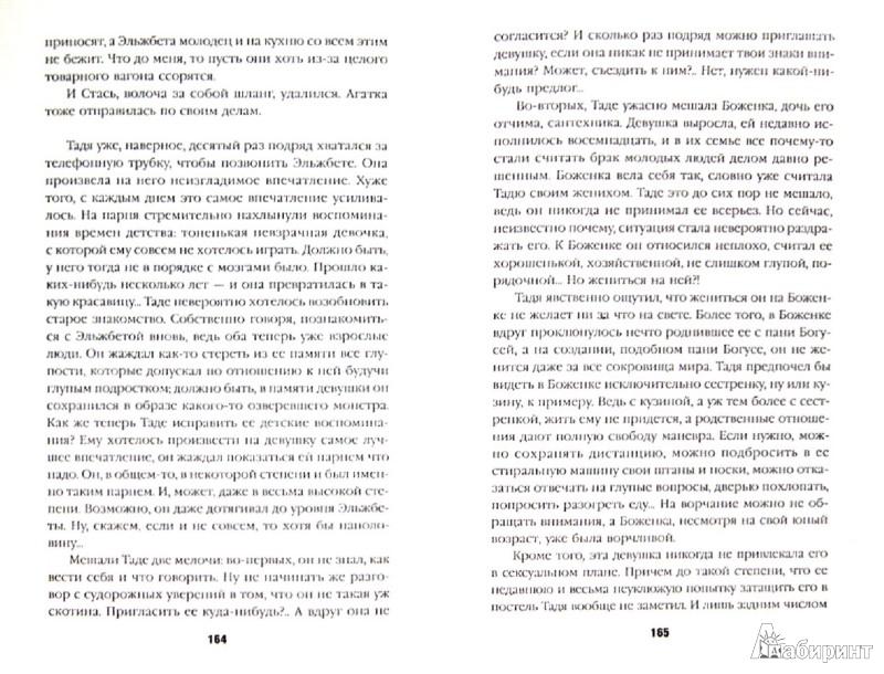 Иллюстрация 1 из 8 для Миллион в портфеле - Иоанна Хмелевская | Лабиринт - книги. Источник: Лабиринт